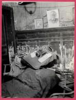 PHOTO Photographie De Presse : (a Priori, Dans La Maison De Paul LEAUTAUD à 92 FONTENAY-aux-ROSES) 1872 - 1956 * Chat - Places