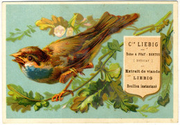 Chromo Liebig. S64. Oiseaux. Birds IV. 1873-78. - Liebig