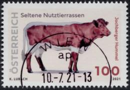 Jochberger Hummel Seltene Nutztierrassen Österreich 2021 Gestempelt/used - 2011-... Gebraucht