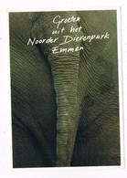 ZOO-186   EMMEN : Noorder Dierenpark ( Zoo, Dierentuin ) - Other