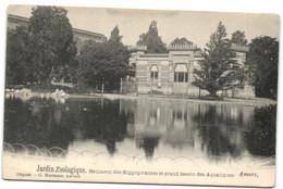Anvers - Jardin Zoologique - Bâtiment Des Hippopotames Et Grand Bassin Des Aquatiques (G. Hermans) - Antwerpen