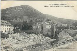 LOZERE / Le Pont De Montvert, Les Deux Ponts - Le Pont De Montvert