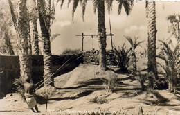 DJIBOUTI  Système Local D'Irrigation - Djibouti