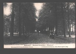 Booischot / Boisschot - Kasteel Terlaeken - Hofdreef - Uitg. Climan-Ruijssers / F. Ginckels-Ceulemans - Heist-op-den-Berg