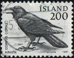 Islande 1981 Oblitéré Used Oiseau Raven Corvus Corax Grand Corbeau SU - Gebruikt