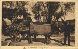HENDAYE  Attelage Basque RV - Hendaye