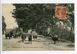 78 VIROFLAY Le Gardien De Chevres Poil Long Un Coin Champetre Route - EM 926 - écrite Timbrée   D02 2020 - Viroflay