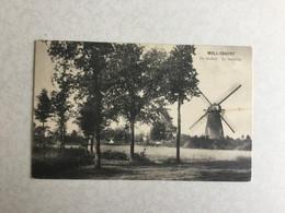 MOL  1910   MOLL-ESAERT  DE MOLEN - LE MOULIN - Mol