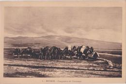 SMYRNE: Campement De Chameaux/edt PALLAMARL'S/ Unknown§§ - Greece