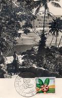 """Iles Wallis Futuna Aux Philatélistes Les Habitants Reconnaissants """" Vous Etes Formidables Europe 1 Mars 58 """" - Wallis And Futuna"""