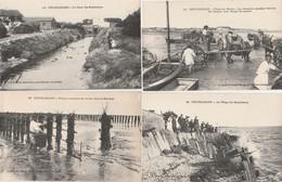 4 CPA:CHATELAILLON (17) PÊCHEUR MOULES DE BOUCHOTS,CANAL DES BOUCHOLEURS,CHARRETTE POUR ARRIVÉE BARQUES ... - Altri Comuni