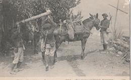 Militaria , Guerre 14 - 18 , Chasseurs Alpins , - Guerre 1914-18