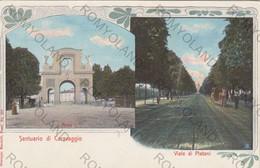 CARTOLINA  CARAVAGGIO,BERGAMO,LOMBARDIA,SANTUARIO,VIALE DI PLATANI,RELIGIONE,STORIA,CULTURA,IMPERO,VIAGGIATA 1904 - Bergamo