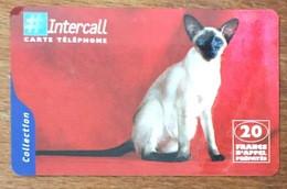 INTERCALL CHAT SIAMOIS CARTE PRÉPAYÉE A CODE CAT PHONECARD CARD QUE POUR LA COLLECTION - Gatos