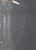 11980   COUTEAU  De Poche    ACIER HORS TOUT  5CM - Altri