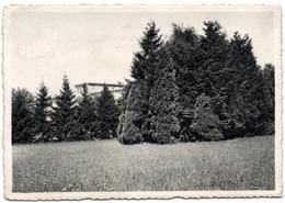 Godinne-sur'-Meuse - Collège Saint-Paul - Un Coin Du Jardin - Yvoir