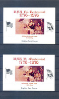 BRIGHTON STAMPS FAIR  2 SPECIAL CARTONS USA BICENTENNIAL  1786-1976  MNH - Other