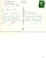 Griffe Lineaire....mazamet  Tarn - 1961-....