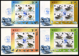 2004 North Korea, Fauna, Birds, Ducks, WWF, 4 FDC's - Maximum Cards