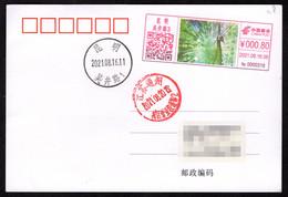 China KunMing Postage Machine Meter: Animal Kingdom,Beautiful Yunnan,Green Peacock - Briefe U. Dokumente