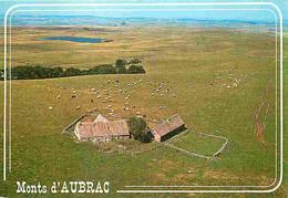 15 - Les Monts Du Cantal - Les Monts D'Aubrac - Paturages Autour D'un Buron - Carte Neuve - CPM - Voir Scans Recto-Verso - Autres Communes