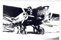 PHOTO   AVION  AVIATION  FARMAN F-222/1 - Aviación