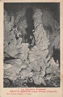 Friulu  Venezia Giulia - Trieste - Grotta Gigante Presso Opcina - La Colonna Ruggero - - Trieste