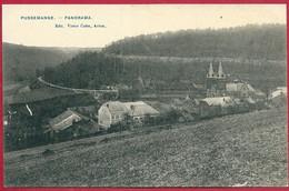 C.P. Pussemange = Panorama - Vresse-sur-Semois