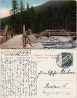 Spindlermühle Špindlerův Mlýn | Spindelmühle Eingang Zum Weißwassergrund 1906 - Czech Republic