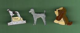 CHIEN *** Lot De 3 Pin's Differents *** 1081 - Tiere