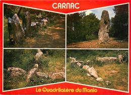 CPSM Carnac-Multivues-Le Quadrilatère Du Manio    L868 - Carnac