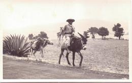 Seltene ALTE  Foto- AK  PATZENARO / Mexico  - Bauer Auf Esel In Der Nähe Vom See - Ca. 1940 Beschriftet - Mexique