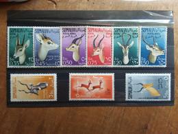 SOMALIA AFIS - Posta Aerea - Gazzelle - Nuovi ** (leggeri Ingiallimenti) + Spese Postali - Somalie (AFIS)