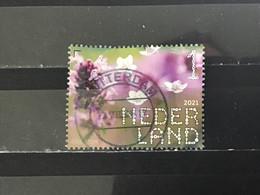 Nederland / The Netherlands - Grote Tijm 2021 - Used Stamps