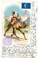 1902 La Poste En Egypte - Facteur - Postbode Op Kameel - Postman On Camel - Ed. Kunzli Frères - Florennes à Sclayn - Sin Clasificación