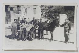 01498 Foto D'epoca 051 - Caccia - Dopo L'allodolata 1947 - Anonymous Persons