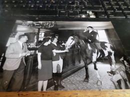 Photo Belga     COB Uccle Auberge Du Vert Chasseur , Une Biere Pour Ce Cheval 9/8/66 - Places