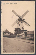Aarsele (G. Beareile) - De Windmolen En Omgeving - Le Moulin à Vent Et De L'environnement - Windmill And Environment. - Windmills