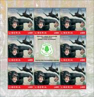 LIBERIA 2020 SHEETLET 8v - CHIMPANZEE CHIMPANZEES APES MONKEYS SINGES - FOREST CONSERVATION DURING COVID-19 PANDEMIC MNH - Chimpanzees