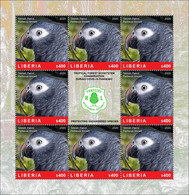 LIBERIA 2020 SHEETLET 8v - BIRDS PARROTS PARROT PERROQUET PERROQUETS - FOREST CONSERVATION DURING COVID-19 PANDEMIC MNH - Papageien