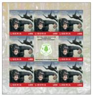 LIBERIA 2020 IMPERF SHEETLET 8v - CHIMPANZEE CHIMPANZEES APES MONKEYS SINGES - FOREST CONSERVATION COVID-19 PANDEMIC MNH - Chimpanzees
