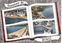 SOUVENIR DE BINIC MULTI VUES, COULEUR,DETAILS A VOIR !!!     REF 72192 - Binic