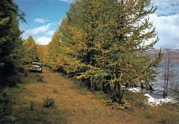 1 AK Mongolei * Eine Landschaft In Der Mongolei * - Mongolia