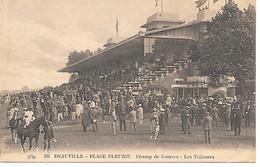 A/385               14            Deauville              Champ De Courses - Les Tribunes - Deauville