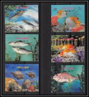 0206/ Umm Al Qiwain N°690/695 Timbre 3D Stamp Poissons Fish Fishes - Umm Al-Qiwain