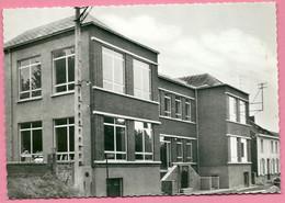 C.P.  Quévy-le-Grand = Maison Communale Et  Ecoles - Quévy