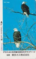 TC JAPON / 110-23827 B - ANIMAL - OISEAU - Rapace AIGLE Pygargue - EAGLE Raptor  BIRD JAPAN Free Phonecard - 5689 - Aquile & Rapaci Diurni