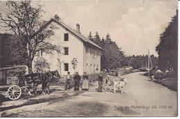 Asile De Molendruz. Attelage, Veau, Vache, Personnages. Circulée 1916 - VD Vaud