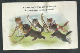 Carte Humoristique De Chats Jouant Au Hockey Sur Gazon, Field Hockey - Humour