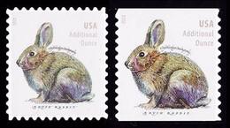 Etats-Unis / United States (Scott No.5544-45 - Rabbit) [**] Regular And Coil - Unused Stamps